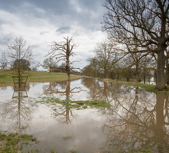 Flooded fields to promote Much Ado About Insurance Brokers - Flood Risk Insurance